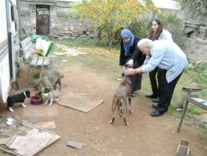 Rencontre des amis au maroc