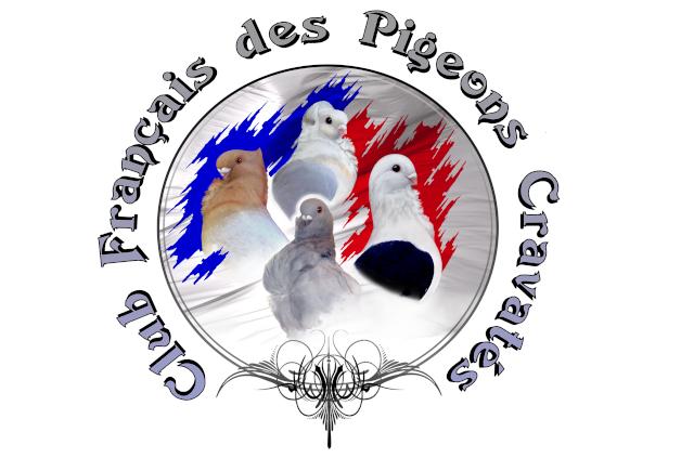 logo_c10.png