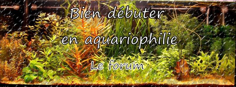 Bien débuter en aquariophilie