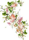fleurs10.png