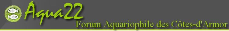 Aqua22