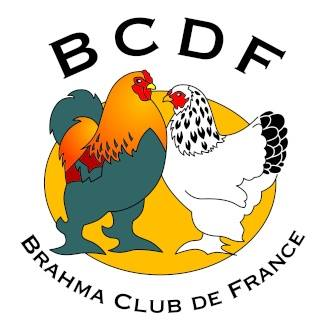 Brahma Club De France