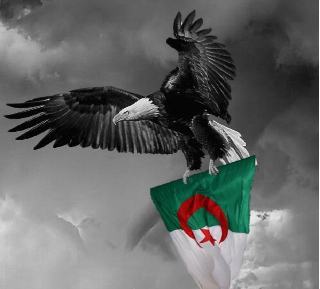 أنا الجزائري ... من أنت؟؟؟؟....جزائري وأفتخـر