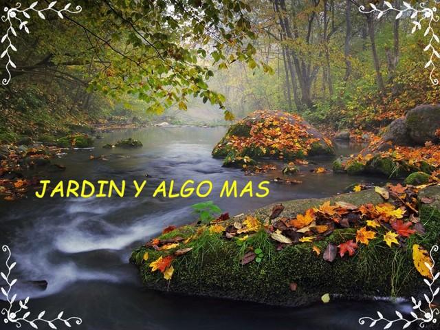 Jardin y Algo Más