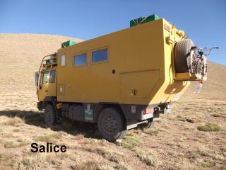 salice10.jpg