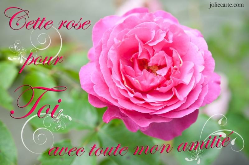 Assez Fleurs d amour et d amitié - fleur de passion IP88