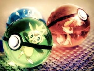 Lupte Pokemon cu voturi