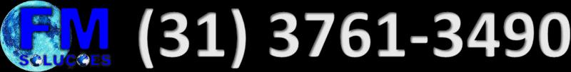 FM SOLUÇÕES - (31) 3761-3490