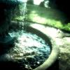 <br>La Fontaine de Jouvence