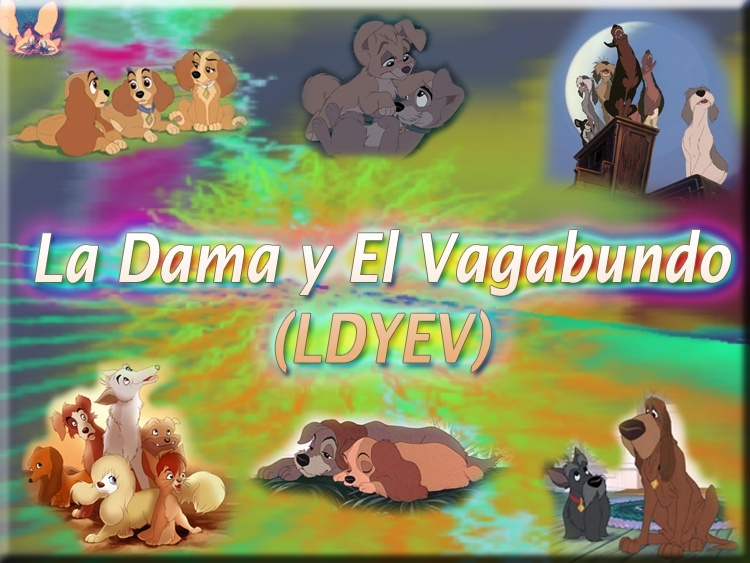 La Dama y El Vagabundo (LDYEV)