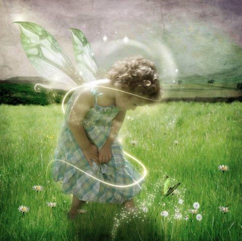 enfant papillon