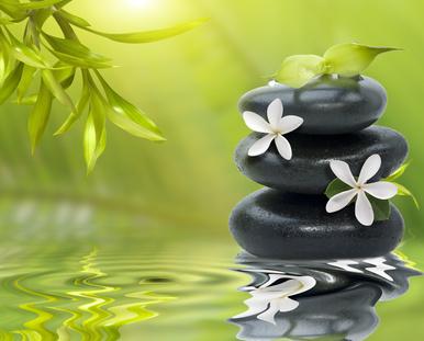 Zen - Paysage