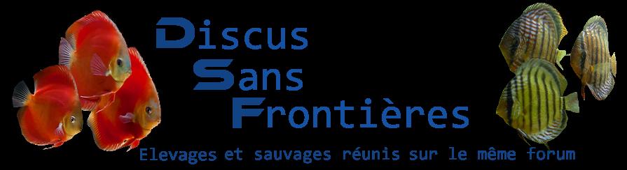 Discus Sans Frontières