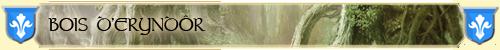 Bois d'Eryndôr