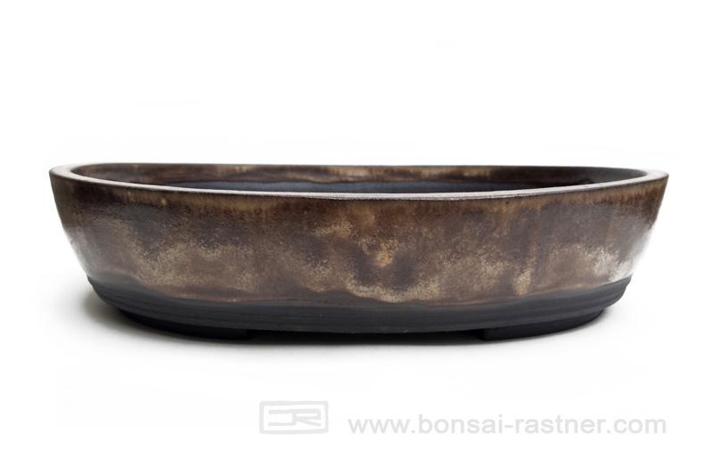 Bonsai rastner