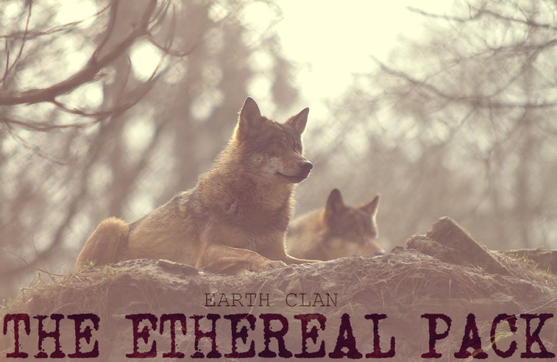 The Ethereal Pack