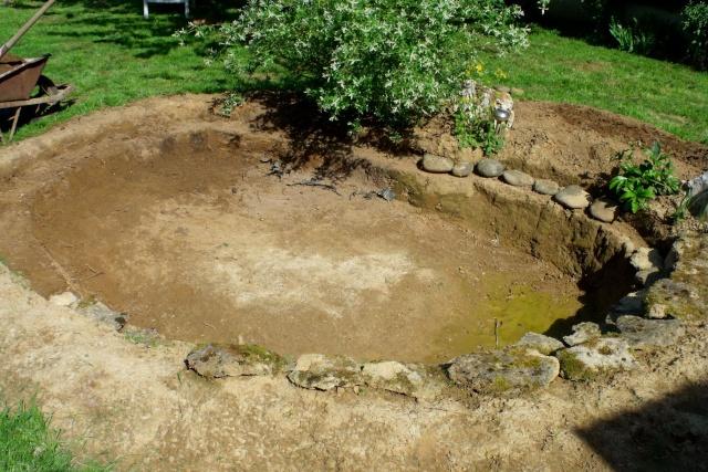 Bassin Dans Mon Jardin - Bassin Tortue Terrestre - Trivid.us