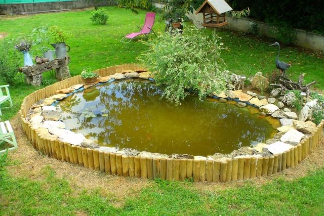 Bassin dans mon jardin for Bassin exterieur pour tortue de floride