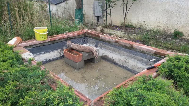 Projet de bassin for Bassin poisson exterieur hors sol