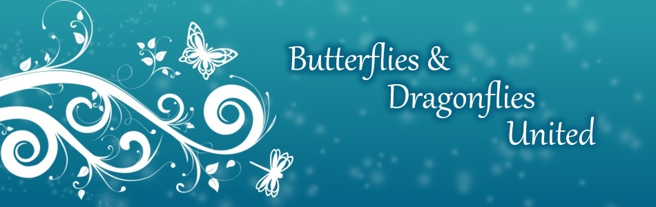 Butterflies and Dragonflies United